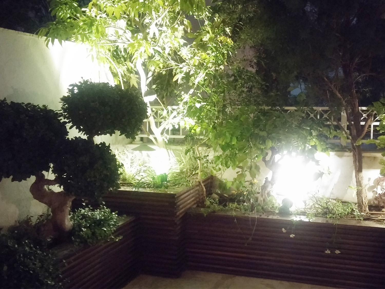 תאורת גן1